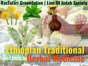 Ethiopian Traditional Herbal Medicine | Botanica