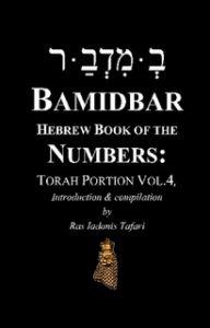 BAMIDBAR Hebrew Book of Numbers Torah Portion Vol.4