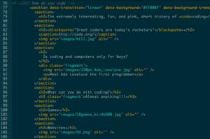 coding language (example)2