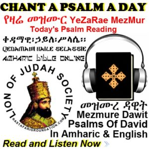 Psalms Of David | In Amharic and English