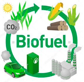 You Won't Guess Who Just Saved America's Biofuels (MoneyMorning / Oil&Gas Investor)