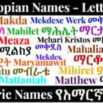 Ethiopian Names - Letter M - Amharic Names የአማርኛ ስሞች