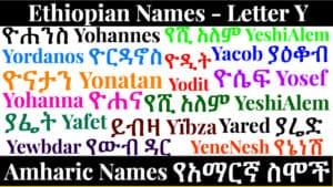 Ethiopian Names - Letter Y - Amharic Names የአማርኛ ስሞች
