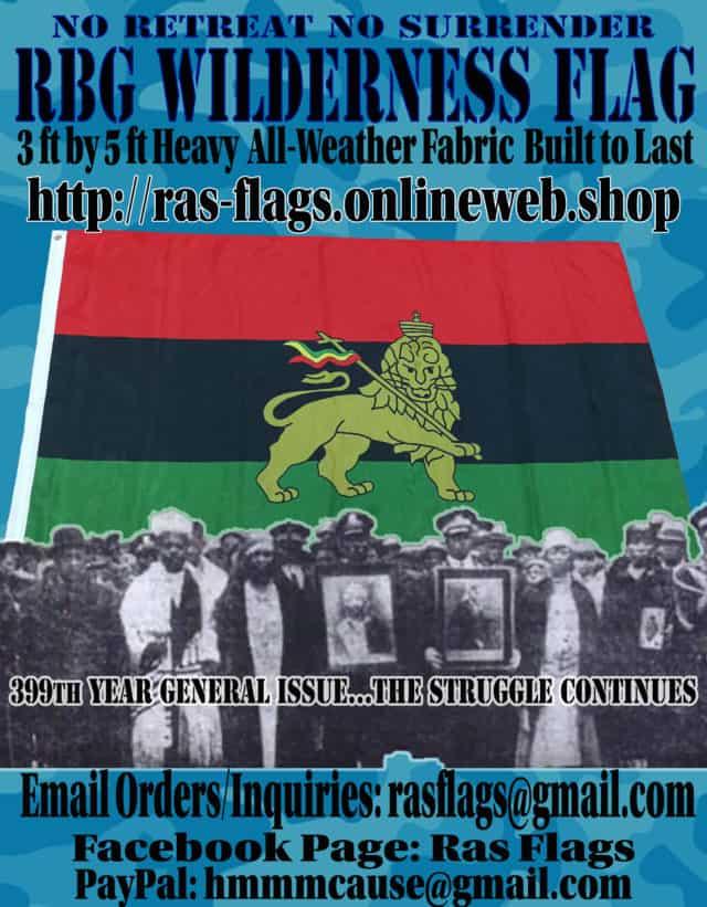 Lion of Judah RBG Flag